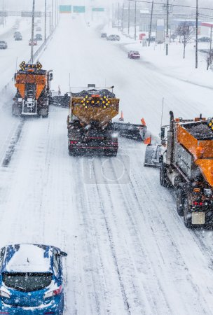 Tree Lined-up Snowplows Clearing the Highway