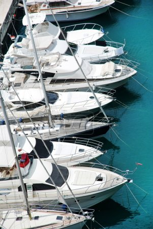 Luxury yachts in harbor of Monaco