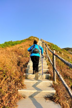 Photo for Hiking woman climbing mountain stairs - Royalty Free Image
