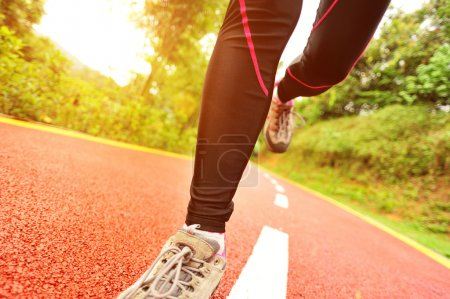 Photo for Healthy lifestyle fitness sports woman legs running at park trail - Royalty Free Image