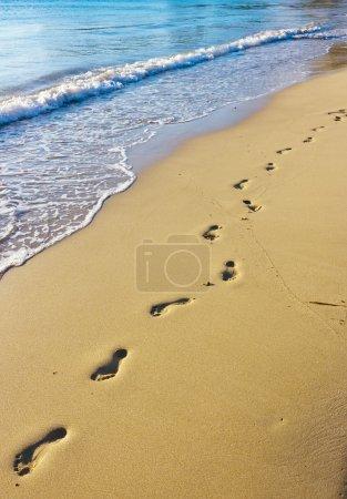 Footprints on the wet sand, Hawaii