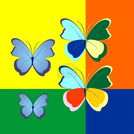 illustration of butterflies in contrasting color