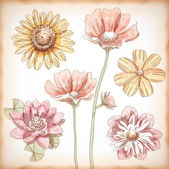 Vector Hand Drawn Assorted Flowers