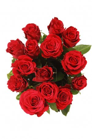 Photo for Bunch of red roses on white - Royalty Free Image