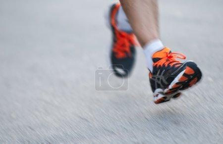 Legs in Motion