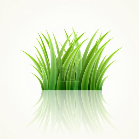 Illustration for Highly detailed vector grass illustration. - Royalty Free Image