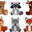 Vector Set Cute colorful exotic animals collection...