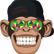 Vectorial illustration, funny monkey with glasses...