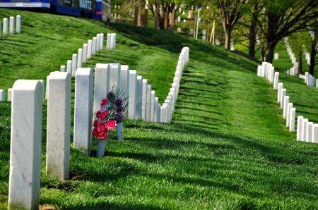Photo pour Cimetière national d'Arlington près de Washington DC, au printemps - image libre de droit