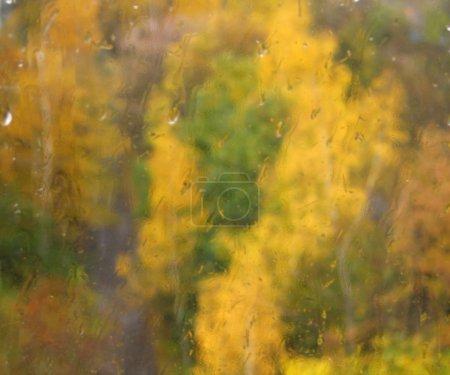 Blurry autumn trees through window glass