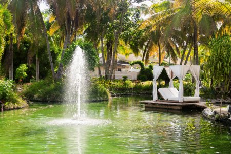 Lake. Fountain