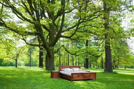 Photo pour Lit dans une forêt- concept de bon sommeil - image libre de droit
