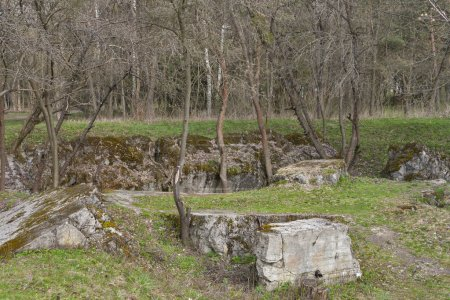 Remains of Adolf Hitler residence Werwolf