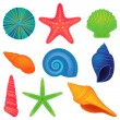 Vector Collection of Shells...