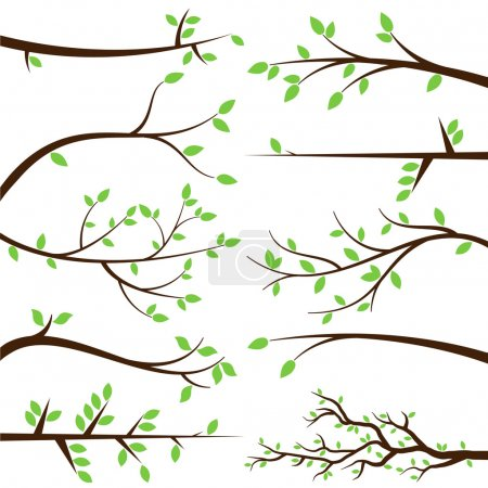 Illustration for Vector Collection of Tree Branch Silhouettes - Royalty Free Image