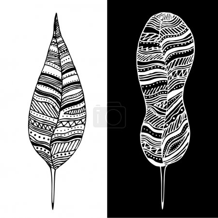 Illustration for Abstract black and white feathers. - Royalty Free Image