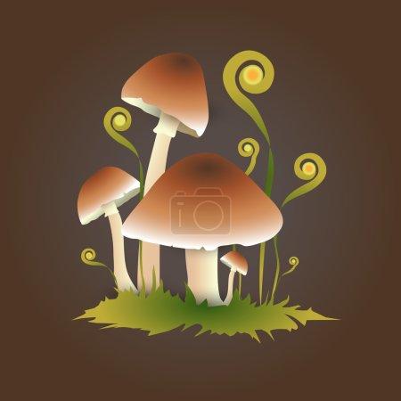 Illustration pour Illustration vectorielle des champignons. - image libre de droit