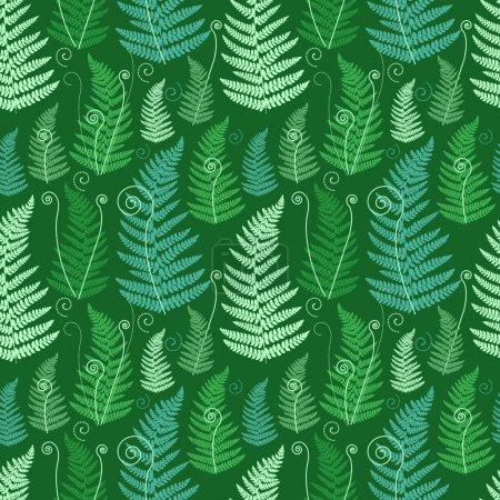 Photo pour Fond floral vert avec feuilles de fougère grunge tourbillonnées . - image libre de droit