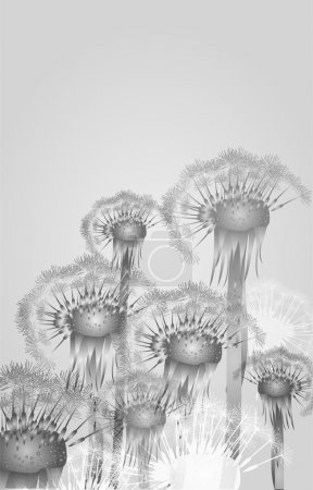 Vector background with dandelion.