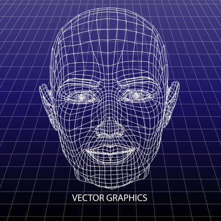 Vector model of face.