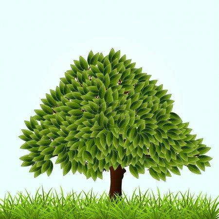 Illustration pour Illustration vectorielle d'un arbre vert. - image libre de droit