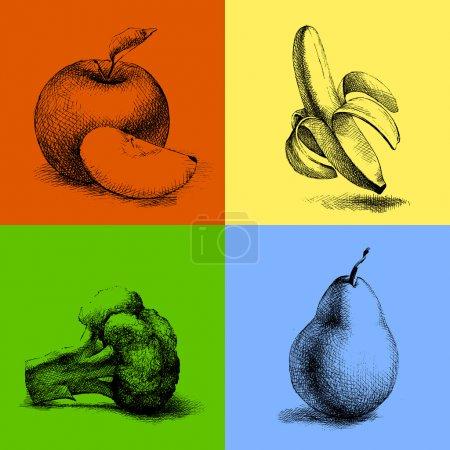 Illustration pour Illustrations vectorielles des fruits et légumes . - image libre de droit