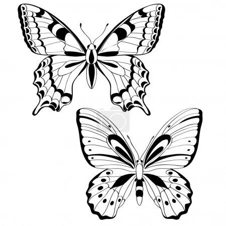 Illustration pour Papillons vectoriels en noir et blanc - illustration vectorielle - image libre de droit