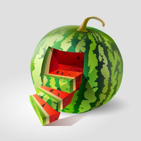 Vector illustration of a watermelon.