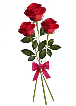 Beauty red rose with bow.