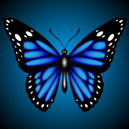 Illustration for Blue butterfly on dark background, vector - Royalty Free Image
