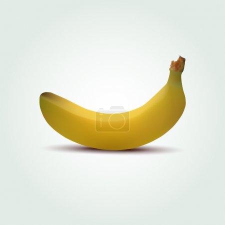 Illustration pour Banane vectorielle, illustration vectorielle - image libre de droit