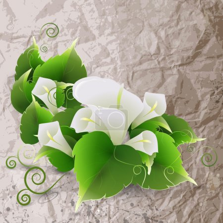 Illustration for White lily on crumpled paper background - Royalty Free Image