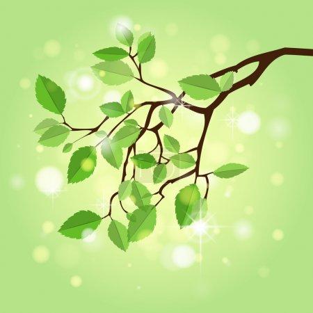 Summer branch,  vector illustration