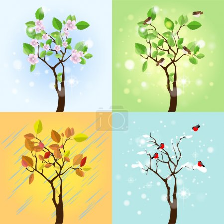 Illustration pour Four Seasons Tree. Vecteur - image libre de droit