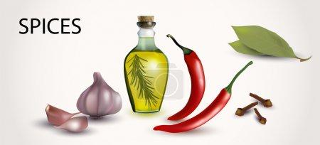 Illustration pour Illustration vectorielle des épices et arômes - image libre de droit