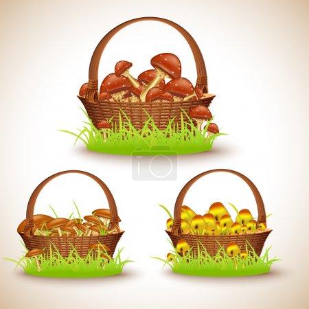 Illustration pour Paniers aux champignons, illustration vectorielle - image libre de droit