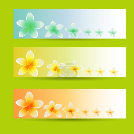 szablon broszura tło wektor kwiat. zestaw Kartki kwiatkowe
