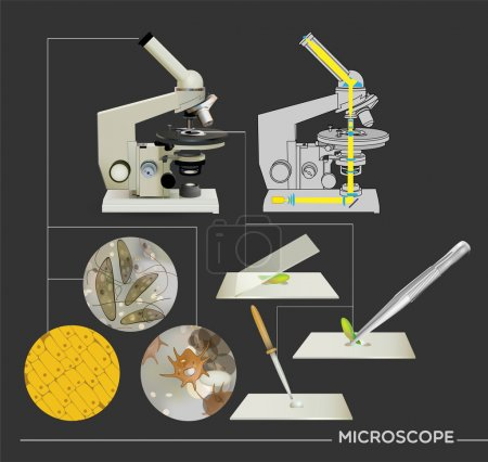 Illustration for Molecular biology science icons - Royalty Free Image