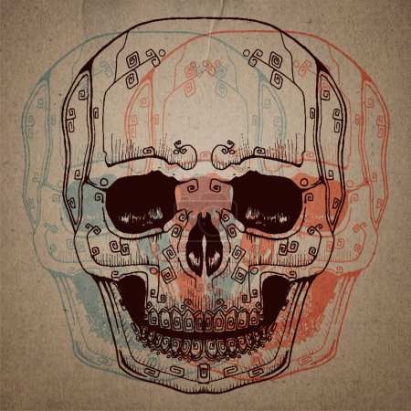 Illustration for Skull study drawing. Pencil on paper. - Royalty Free Image