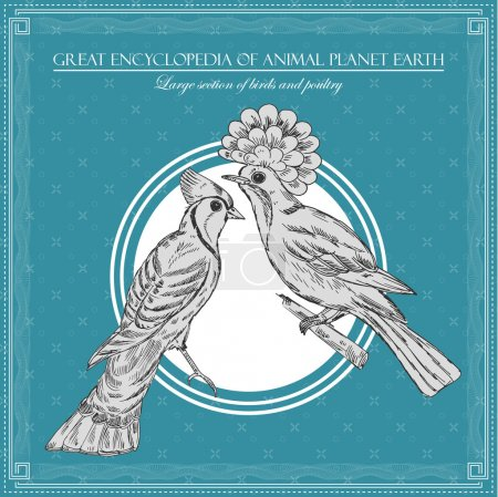 Great encyclopedia of animal planet earth, vintage birds illustration