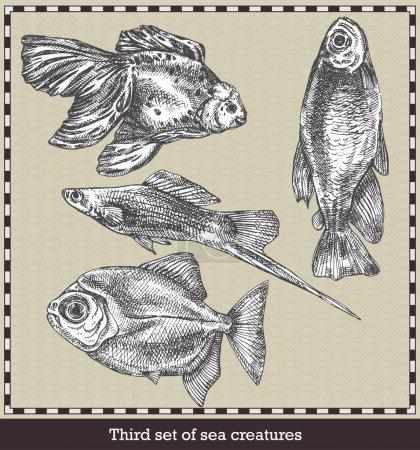 Illustration pour Ensemble de poissons de mer. Illustration vectorielle de style rétro. Isolé sur fond gris - image libre de droit