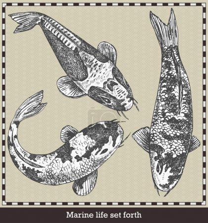 Illustration pour Ensemble de poissons. Illustration vectorielle de style rétro. Isolé sur fond gris - image libre de droit