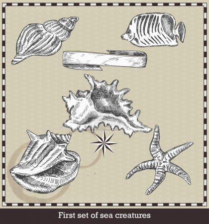 Illustration pour Ensemble de poissons de mer, coquillages et étoiles de mer. Illustration vectorielle de style rétro. Isolé sur fond gris - image libre de droit