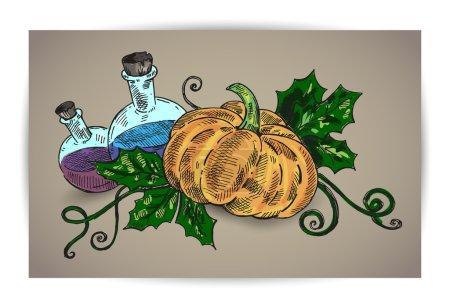 Illustration pour Citrouille d'Halloween et produits chimiques sur fond brun. Illustration vectorielle - image libre de droit