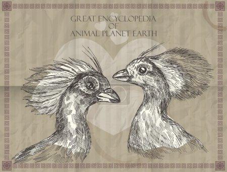 Illustration pour Têtes de paons vecteurs de la Grande Encyclopédie des animaux Planète Terre - image libre de droit