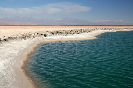 Salar of Atacama