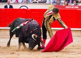 Jose Tomas bullfighting in Barcelona