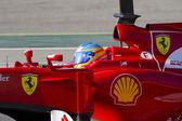 Formula 1 - Fernando Alonso