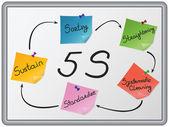 The 5 S organization