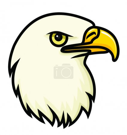 A cartoon vector drawing of a bald eagle's face....